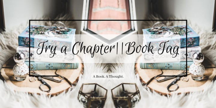 Try a Chapter||Book Tag (Cleaning my TBR)💫