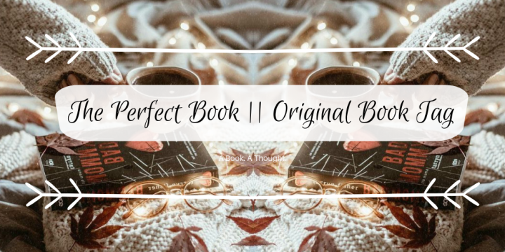 The Perfect Book || Original Book Tag💛