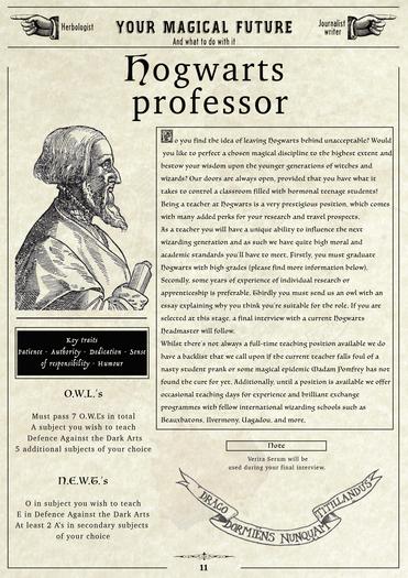 wizardingcareerprofessor